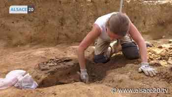 BRUMATH : Les Journées européennes de l'archéologie. - alsace20.tv