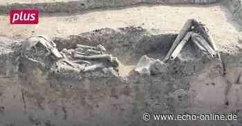 Darmstädter Archäologen: Der etwas andere Knochenjob