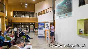 Université de Perpignan : le Criobe fête 50 ans de recherches autour des coraux - L'Indépendant
