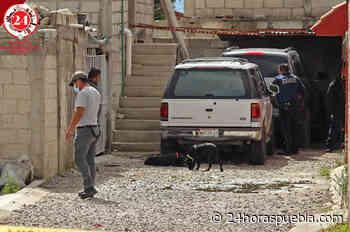Asesinan a mujer en Guadalupe Hidalgo; tenía golpes y lesiones de arma blanca - 24 Horas El Diario Sin Límites Puebla