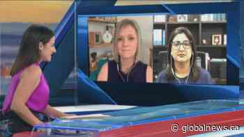 Global BC political panel: June 20