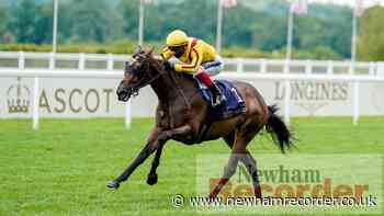 Ones to watch on Ladies Day at Royal Ascot - Newham Recorder