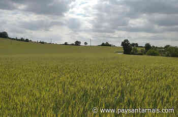 Céréales | Un nouveau silo bio chez RAGT à Viviers-Les-Lavaur - Le Paysan Tarnais