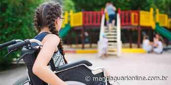 Em Mandaguari, brinquedos adaptados agora são obrigatórios - Mandaguari Online