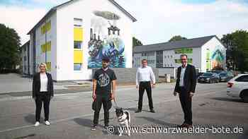 Zwei Wohnblöcke in Villingen - Graffiti-Künstler gestaltet Fassaden - Schwarzwälder Bote