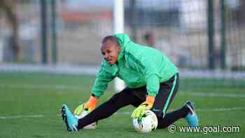 Ezenwa returns as Nigeria announce squad for Mexico friendly