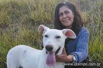 Protetores farão feira de adoção de animais em Betim no sábado (19) - O Tempo