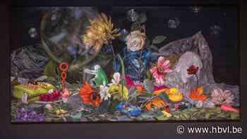 Gallo-Romeins Museum integreert hedendaagse kunst (Tongeren) - Het Belang van Limburg Mobile - Het Belang van Limburg