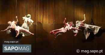 Trengo - Festival de Circo do Porto regressa à cidade a 28 de junho - SAPO Mag