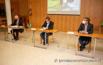 Grupo Sousa/Porto Santo Line apoia ciência da Universidade de Aveiro no Porto Santo - Jornal Económico