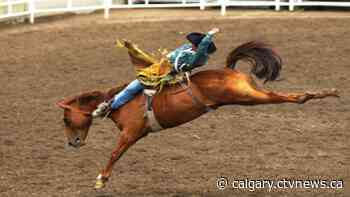 Rodeo athletes competing at Calgary Stampede will require proof of vaccine - CTV Toronto