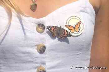 Annual Butterfly Release scheduled for July