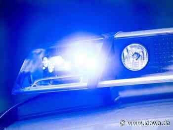 Polizei Landshut - Frau fährt zwei Mädchen an und flüchtet - idowa