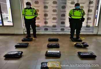 Incautaron 25 kilogramos de marihuana enviada como encomienda en la vía al Guamo - Alerta Tolima