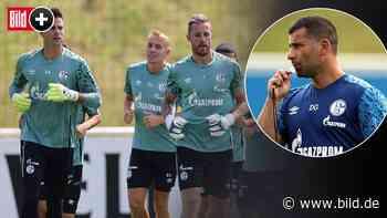 Schalke 04: Dimitrios Grammozis schleift Spieler im Trainings-Camp - BILD