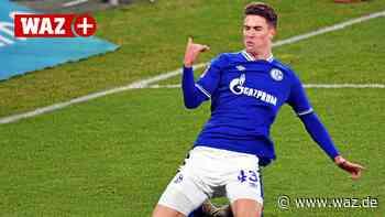 Der FC Schalke 04 sucht den neuen Hoppe - WAZ News