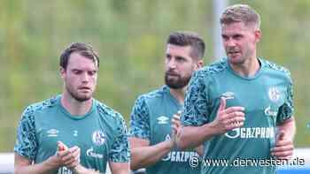 FC Schalke 04 enthüllt neue Details – DAS will jetzt jeder Fan wissen - Der Westen