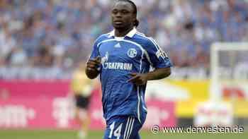 FC Schalke 04: Gerald Asamoah – DAS wäre der größte Fehler für S04 - Der Westen