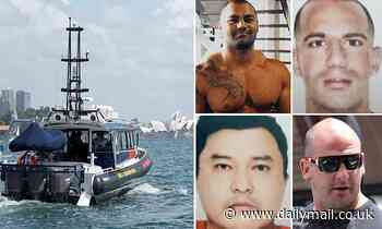 Australia's 16 cocaine kingpins trafficking billions of dollars and illegal drugs Down Under