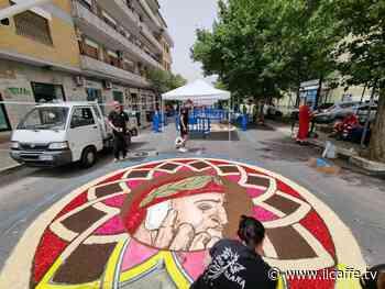 Ciampino, successo della Festa dei Fiori in centro, con i quadri infiorati - Il Caffè.tv