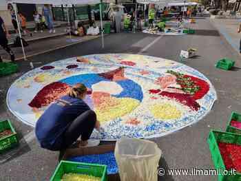 Ciampino | 'Rinascere con un fiore', successo per l'iniziativa - ilmamilio.it - L'informazione dei Castelli romani