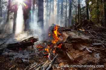 Five new fires in the northeast region - TimminsToday