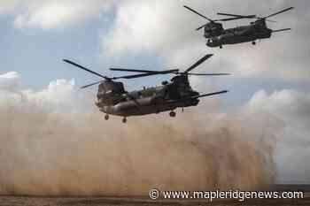 US general: 'wildfire of terrorism' on march in Africa – Maple Ridge News - Maple Ridge News