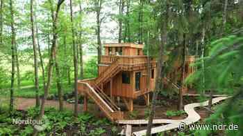 Camping in Worpswede: Das Naturresort Land of Green - NDR.de