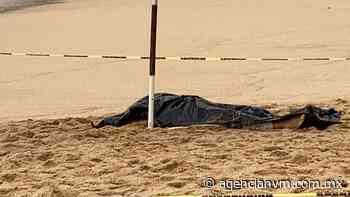 Muere mujer turista ahogada en playa de Acapulco - Agencia NVM
