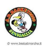 Il Basket 2000 Senigallia chiude la stagione con una sconfitta interna - Serie B Femminile Girone Rosso - Basketmarche.it