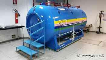 Sanità:intossicato da monossido carbonio,salvato a Partinico - Agenzia ANSA