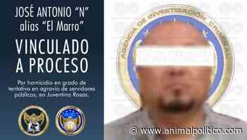Vinculan a proceso a 'El Marro', líder de Cártel Santa Rosa de Lima - Animal Político