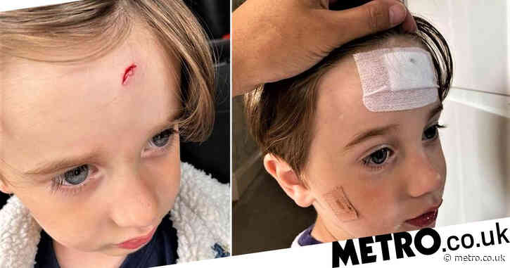 Boy, 3, 'nearly blinded' after aggressive peacock attacks him at zoo