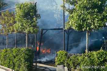 Tuinhuis met buitenkeuken gaat volledig in vlammen op - Het Belang van Limburg