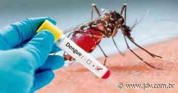 Guaramirim segue com orientações visando o combate da dengue - Jornal do Vale do Itapocu