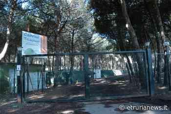 Civitavecchia - Arsial/Campeggiatori La Frasca, per il Tribunale Civile l'atto di vendita fu regolare - Paolo Gianlorenzo