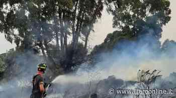 Incendio di sterpaglie a Civitavecchia, paura per una Rsa - Il Faro online
