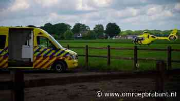 Vrouw zwaargewond na val van paard in Deurne - Omroep Brabant