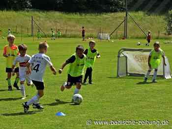 Camp für kleine Kicker - Rheinfelden - Badische Zeitung