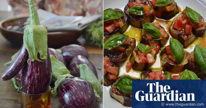 Rachel Roddy's recipe for roast aubergine with tomato and basil | A kitchen in Rome
