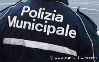 Campobello di Licata, nuovo numero unico della Polizia Municipale - Canicatti Web Notizie