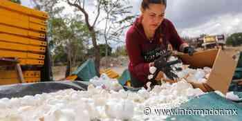 Limpian el río Santiago con cascarones de huevo - EL INFORMADOR