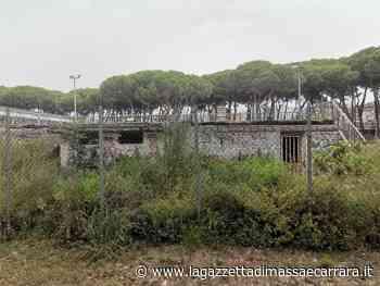Marina di Carrara, passano gli anni ma il degrado rimane - La Gazzetta di Massa e Carrara