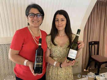"""Il Fiano di Avellino """"I Favati"""" spicca al Merano Wine Festival - Campania - Agenzia ANSA"""