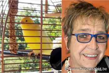 Bon Jovi, de kanarie van Marleen, verdween spoorloos na windhoos in Ardèche