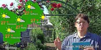 Der Sommer wird wieder milder - Das Wettervideo für Gifhorn vom 21. bis 25. Juni 2021 - Wolfsburger Allgemeine