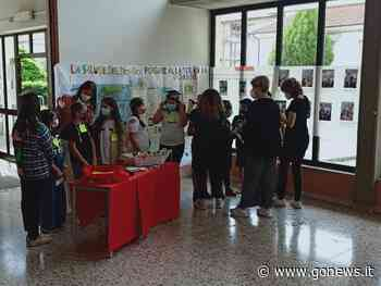 Alla scuola Pascoli di Fucecchio l'anno si conclude con una mostra dei lavori svolti - gonews.it - gonews