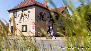Grüne wollen Leuchtturmprojekt für ökologisches Bauen in Leeste - WESER-KURIER