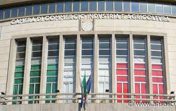 Camera commercio: Treu a Parlamento imprese a Cosenza - Calabria - Agenzia ANSA