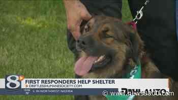 First Responders help shelter animals in Viroqua - News8000.com - WKBT